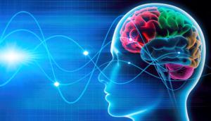 лиза - Лиза Ренье. Программирование подсознания Brain-598x342-300x172